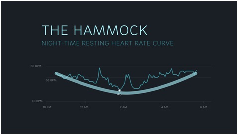 night time human heart rate