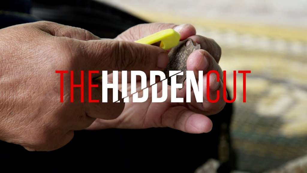 the hidden cut in female