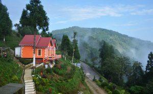 Tinchuley, Darjeeling