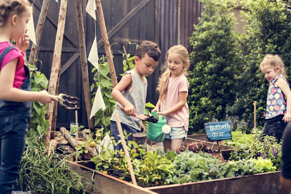 kids Plant a garden